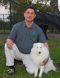 Wayne Dooley - The Dog Trainer Guy